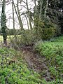 A soggy drainage ditch - geograph.org.uk - 1012416.jpg