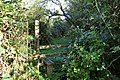 A stile on the footpath to North Lobb near East Saunton Farm - geograph.org.uk - 2126259.jpg