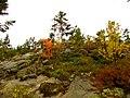 Acadia National Park (8111141748).jpg