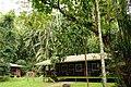 Accommodation at Bako - Hostel - Sarawak - Borneo - Malaysia - panoramio.jpg