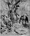 Aimard - Les Chasseurs d'abeilles, 1893, illust page 325.png