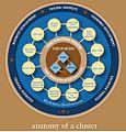 Anatomy of a Cluster.jpg