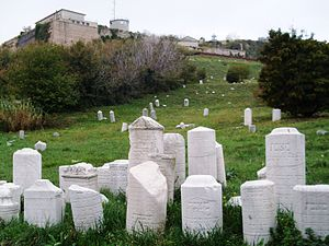 History of the Jews in Ancona - tombstones in the old Jewish cemetery (32)