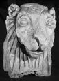 Andrea Malfatti – Testa di leone.tif