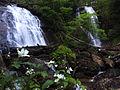 Anna Ruby Falls (17900279605).jpg