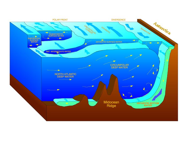 南極洲陸地邊緣的南極底層水流向圖示(圖片來源:維基百科。)