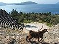 Antiphellos 2 - panoramio.jpg