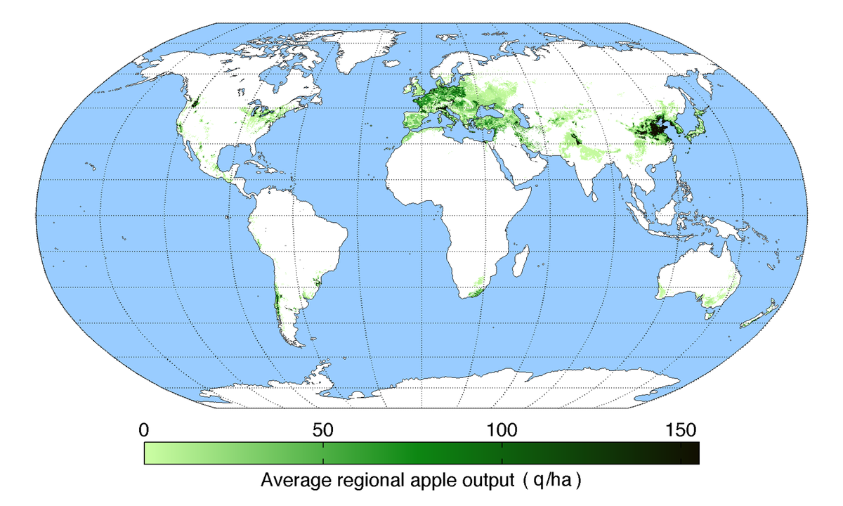 List Of Countries By Apple Production Wikipedia - Map of tomato consumption per capita in us