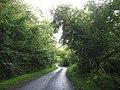 Approaching the end of the Llanddona-Wern-y-wylan road - geograph.org.uk - 950778.jpg