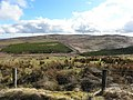 Ardnabreena Townland - geograph.org.uk - 1771382.jpg