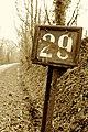 Argentré-du-Plessis - 20140304 (1).jpg