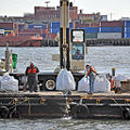Artificial oyster reef creation off Governors Island -b.jpg