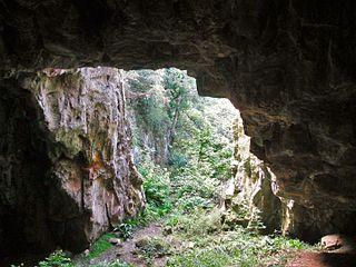 Ash Hole Cavern Cave in Brixham, Devon, England