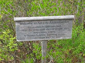 Asticou Azalea Garden - Image: Asticou Azalea Garden 2006 1