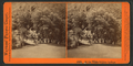 At the White Sulphur Springs, by Watkins, Carleton E., 1829-1916.png