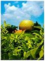 Auroville - pondicherry.jpg