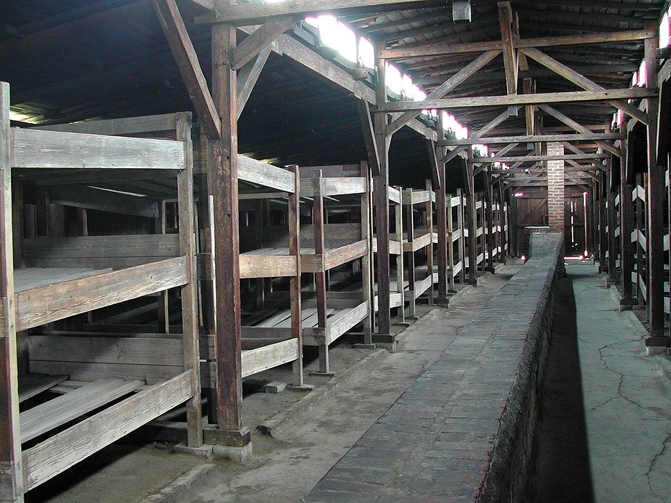 Auschwitz Birkenau German Nazi Concentration and Extermination Camp (1940-1945)-107820
