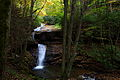 Autumn-waterfall-cliffside-west-virginia - West Virginia - ForestWander.jpg