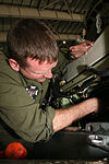 Aviation combat element wrap up DVIDS174548.jpg