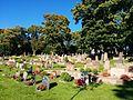 Backa gamla kyrkogård.jpg