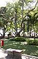 Banco da praça da bandeira - panoramio.jpg