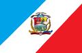 Bandera del municipio jose tadeo monagas.png
