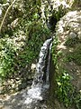Bani Homaid Spring - عين بني حميد - panoramio.jpg