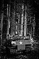 Bastogne Historic Walk 2011 (6545714313).jpg