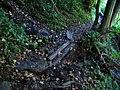 Bečice, cesta podél Lužnice, můstek přes pramínek.jpg