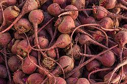 Beta vulgaris, San Francisco farmers market.jpg