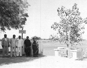 Prabhas Patan - In 1957, C. Rajagopalachari (ex Governor-general of India planted a sapling at the Bhalka.