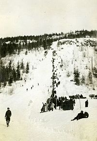 Big Hill, Revelstoke, 1916.jpg