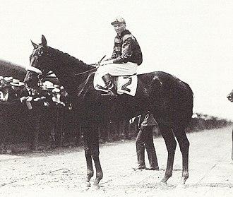 Billy Kelly (horse) - Billy Kelly, circa 1919