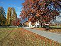 Birgitz im Herbst 2011d.jpg