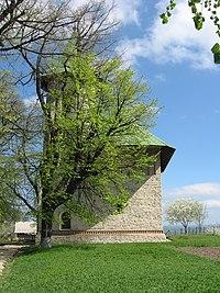 Biserica Adormirea Maicii Domnului din Deleni.jpg