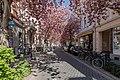 Bonn, Breite Straße -- 2020 -- 6522.jpg