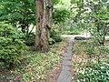 Botanischer Garten Freiburg - DSC06370.jpg