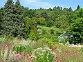 Botanischer Garten der Universität Würzburg - IMG 6833.JPG
