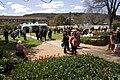 Bowral NSW 2576, Australia - panoramio (18).jpg