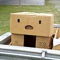 Box-pareidolia-2011-01-30.jpg
