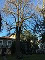 Braga -i---i- (27423007059).jpg