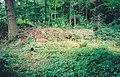Brash pile in Pound Wood nature reserve, Benfleet - geograph.org.uk - 1639933.jpg