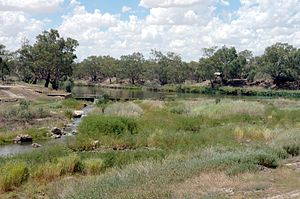 Brewarrina, New South Wales - The Brewarrina fish traps 2008