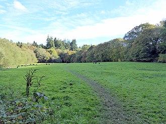 Sussex Wildlife Trust - Image: Brickfield Meadow (geograph 5560851)