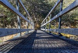Bridge over Speargrass Creek, Nelson Lakes National Park, New Zealand.jpg