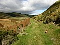 Bridleway along valley - geograph.org.uk - 601062.jpg