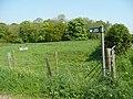Bridleway off Webbs Lane - geograph.org.uk - 794105.jpg