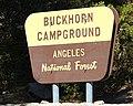 Buckhorn sign.jpg