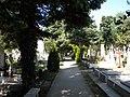 Bucuresti. Romania. Cimitirul Bellu Catolic. Alee din cimitir, august 2017.jpg
