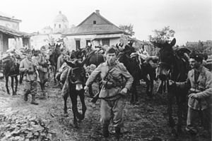 Italian Army in Russia - Italians with pack mules in Russia.